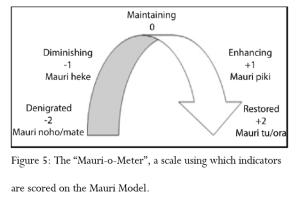 Mauri-o-meter-300x204